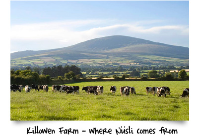 killowen-farm2